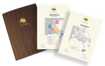 В дополнение к онлайн-результату вы получите благородный сертификат происхождения в золотой рамке и другие документы в элегантном портфолио.